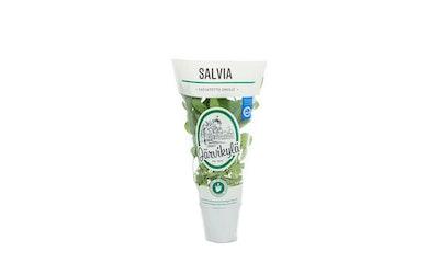 Järvikylä Salvia ruukku