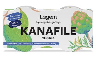 Lagom Kanafile vedessä 2 x 80 g/42 g