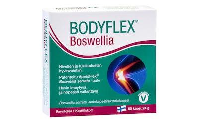 Bodyflex boswellia 60 kaps. 24g
