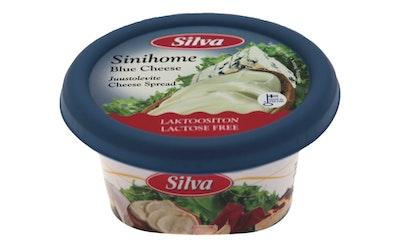 Silva juustolevite 150g sinihome