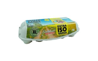 Laitilan Kanatarha vapaan kanan munia XL10 780g