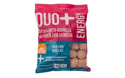 Mush Duo+ Täysravinto koirille lohi-sika 1 kg