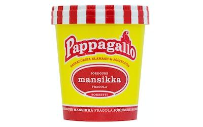 Pappagallo 0,5L Mansikkasorbetti