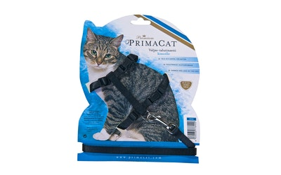 Premium PrimaCat Kissan valjas-talutinsetti