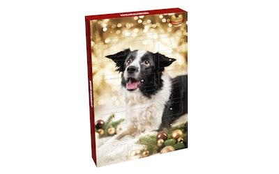 Hau-Hau champion täyslihaherkut joulukalenteri koirille 48g