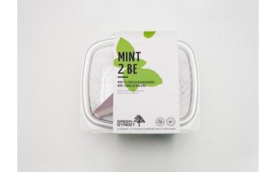 Greenstreet Mint2Be minttu-suklaa raakakakku 92g