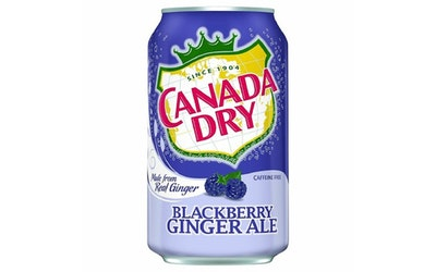 Canada Dry Blackberry ginger ale 0,33l