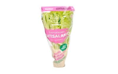 Vihreäkeiju ruukkusalaatti