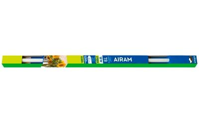 Airam loisteputki G13 15W 950lm 30K LT830S