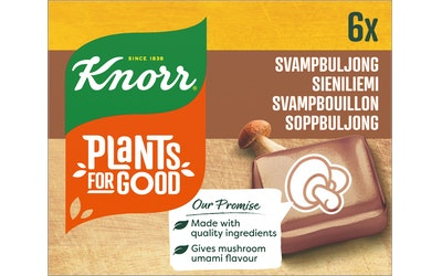 Knorr Liemikuutiot 6x10g Sieni
