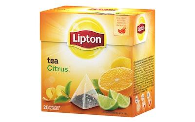 Lipton Citrus Tea 20 pyramidipussia 36g