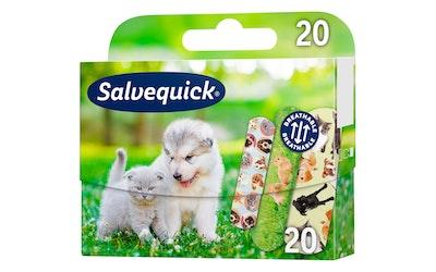 Salvequick laastari 20kpl Animal Planet