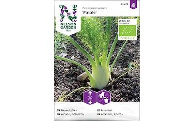 Siemen Salaattifenkoli luomu