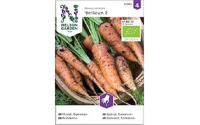 Siemen Porkkana Berl2 luomu