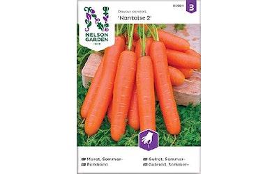 Siemen Porkkana, Nantaise 2