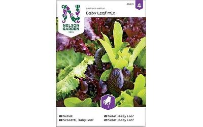 Siemen Salaatti Baby Leaf Seos