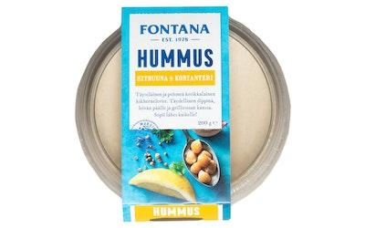 Fontana hummus sitruuna ja korianteri 200g
