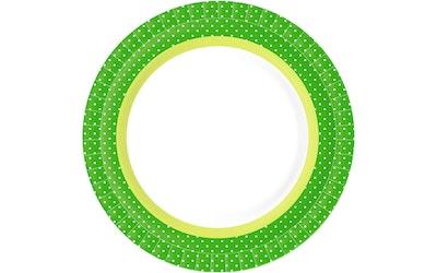 Duni kartonkilautanen 22cm Bbq Green Line 10kpl