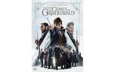 Ihmeotukset: Grindelwaldin Rikokset DVD