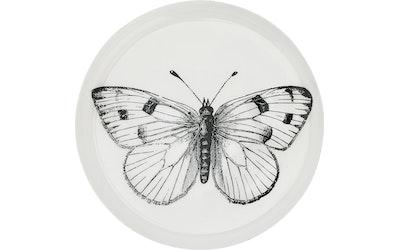 Hemtex 24h metallialunen Butterfly
