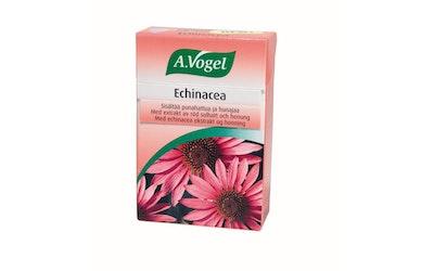 Echinacea kurkkupastilli 30g