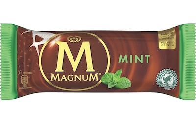 Magnum Mint 100 ml