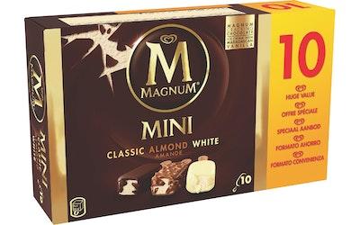 Magnum 10x55 ml Classic/Almond/Whi