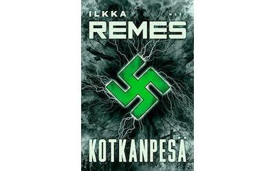 Remes, Kotkanpesä - kuva