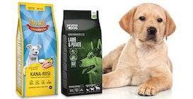 Isot koiranruokapaketit - kokoelma