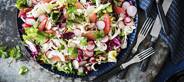 Fenkoli-greippisalaatti