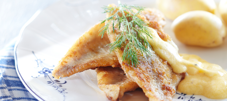 Paistettu kala ja helppo hollandaisekastike